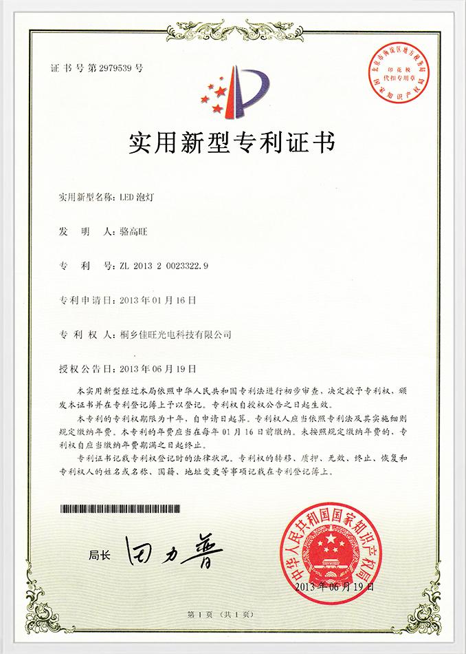 Muster eines Gebrauchspatents