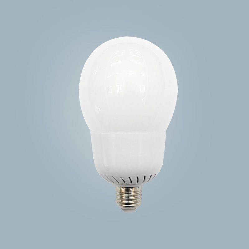 LED Birnen Licht G95-15w